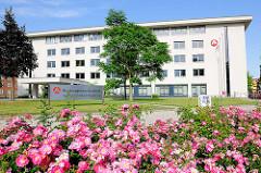 Bundesagentur für Arbeit - Agentur für Arbeit Magdeburg - Beet mit blühenden Rosen an der Strasse.