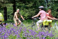 Radfahrtour entlang der Wandse in Hamburg Wandsbek; RadfahrerInnen auf dem Wandsewanderweg - blühende blaue Blumen.