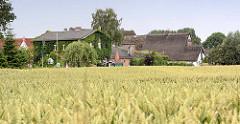 Getreidefeld - Wohnhäuser am Feldesrand; Gaststätte To'n Vossbau