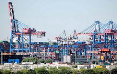 Blick über die Süderelbe zum Container Terminal Burchardkai in Hamburg Waltershof