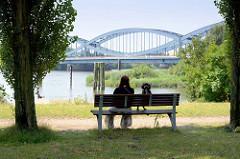 Entenwerder Elbpark in Hamburg Rothenburgsort - Ruhebank im Schatten von Bäumen; im Hintergrund die Elbbrücken über die Norderelbe.