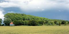 Dunkler Gewitterhimmel über Seestermühe - Bäume an der Lindenallee; weisser Teepavillon mit rotem Dach / Gutshof von Kielmansegg.