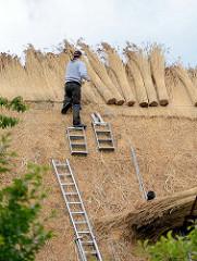 Ein Reetdach eines Bauernhauses wird neu gedeckt - Dachdecker in Seestermühe bei der Arbeit