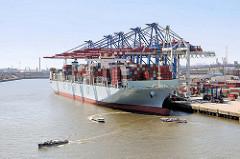 Der Containerfrachter COSCO FRANCE unter den Containerbrücken des Terminals Tollerort - das Frachtschiff hat eine Länge von 366 m und kann 13686 TEU Container transportieren.