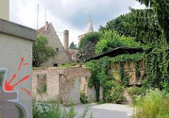 Hinterhof - Hausruinen mit Efeu bewachsen - Fotos aus Brandenburg an der Havel.