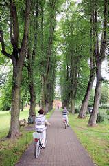 Lindenalle beim Burgwall in Pritzwalk; FahrradfahrerIn zwischen hohen Bäumen.