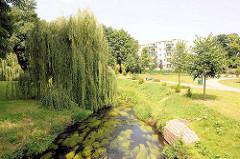 Bachlauf in Pritzwalk, Brandenburg - Weiden mit tiefhängenden Zweigen - Fussweg / Spazierweg; Neubauten im Hintergrund.