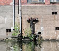 Relikte vom Hafenbetrieb, Schiffsbetrieb im Billbrooker Kanal in Hamburg Billbrook - junge Grünpflanzen wachsen aus der Mauer eines Speichergebäudes.