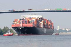 - - bildarchiv-hamburg.com - -  Schiffe im Hamburger Hafen und der Elbe - der Containerfrachter APL MERLION auf der Süderelbe in Fahrt zum Hamburger Container Terminal Altenwerder.