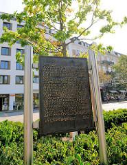 Neu gepflanzte Friedenseiche am Eppendorfer Marktplatz - Text SAG NEIN! von Wolfgang Borchert auf einer Metalltafel.