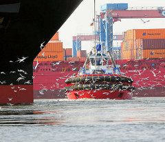 Schlepper / Schwarm Möwen im Hamburger Hafen; Container Terminal Hamburg Altenwerder.