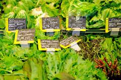 Bio-Wochenmarkt in Hamburg Winterhude - Winterhuder Marktplatz. Gemüsestand - unterschiedliche Salate in der Auslage / Schilder Löwenzahn, Endivie, Wasabi-Salat, Kopfsalat, Eissalat - Anbauverband Demeter / Bioland.