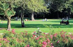 Eppendorfer Park - blühende Rosen, ParkbesucherInnen in der Sonne auf der Wiese.