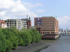 Abgeböschtes Elbufer mit Weiden beim Altonaer Holzhafen - Bürogebäude am Elbufer - Hamburgfotos aus der Altonaer Altstadt. (2003)