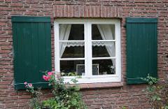 Stadtteilbilder aus Eidelstedt, Dorfstrasse Haus Koyen, Fensterluken Rosen im Vorgarten.