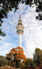 Hamburg im Herbst - Herbstbaum in Planen un Blomen - Heinrich Hertz Turm / Fernsehturm / Telemichel.