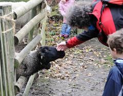 Mutter mit Kind streicheln ein Schaf im Volksdorfer Museumsdorf.