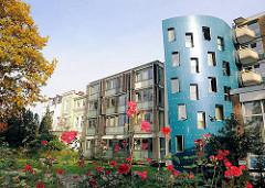 Moderne Architektur im Hamburger Mittelweg - blühende Rosen im Vorgarten.