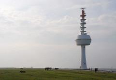 Radarturm am Nordseeufer der Insel Neuwerk - Pferde auf der Wiese.