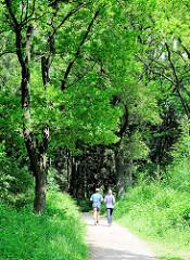 Hohe Bäume im Altonaer Volkspark in Hamburg Bahrenfeld - Jogger auf ihrer Laufrunde im Park.