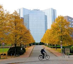 Herbstbilder aus der Hansestadt Hamburg - Bürokomplex Alstercity in Barmbek Süd - Allee mit Herbstbäumen an der Auffahrt - Fahrradfahrer.