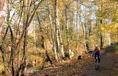Birken und Erlen amn Kollauwanderweg am Rande der Kollau in herbstlicher Färbung  - Rennradfahrer mit Helm auf dem Weg - Herbstbilder aus Hamburg Niendorf.
