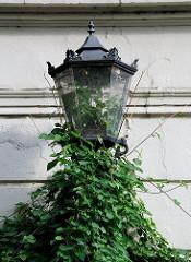 Mit Efeu bewachsene Lampe in der Fischers Allee in Hambug Ottensen.