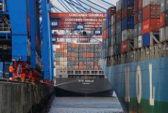 Ballinkai HHLA Container Terminals Altenwerder - Anlegen eines Containerschiffs am Kai