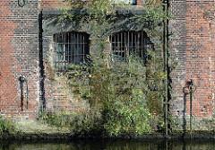 Gebäude der Harburger Mühlenbetriebe vor der Restaurierung - Pflanzen und Bäume wachsen aus dem Mauerwerk. ( 2007 )