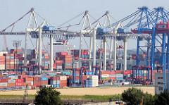 HHLA Containerterminal Tollerort auf Hamburg Steinwerder - Containerlager und Containerkräne.