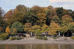 Herbst in Hamburg Othmarschen - Herbstbäume am Elbufer - Strandcafe am Wasser.