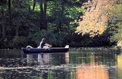 Ruderboot in der Herbstsonne auf dem Hamburger Stadtparksee - ein Ast mit Herbstblättern spiegelt sich im Wasser.