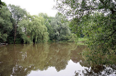 Dorfweiher, Löschteich in Hamburg Sinstorf - Weiden stehen am Ufer, die Zweige hängen ins Wasser.