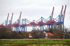 Wiesen und Wohnhäuser von Hamburg Moorburg - Containerbrücken vom Terminal Altenwerder.