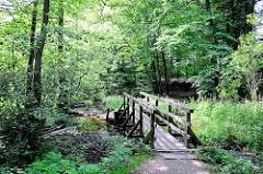 Lauf vom Bach Bredenbek in Hamburg Bergstedt. Eine Holzbrücke führt über den Flusslauf.