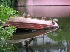Ruderboot im Wasser des Isebekkanals von Hamburg-Eimsbüttel - Enten.
