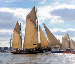 Parade mit historischen Schiffen der Stiftung Maritim und Museumhafen Oevelgönne. Der Fischerewer Präsident Freiher rvon Maltzahn HF.294 unter Segel auf der Elbe.