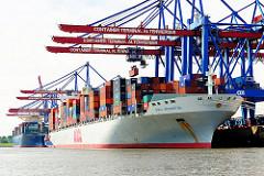 Ballinkai des HHLA Container Terminals Altenwerder - Frachtschiffe unter den Conainerbrücken.