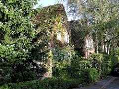 Gartenstadt Hamburg Alsterdorf Bezirk Hamburg Nord, Wohngebäude mit Efeu bewachsen