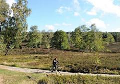 Wanderwege im 773 Hektar großen Naturschutzgebiet Fischbeker Heide. Ein Fahrradfahrter fährt auf dem Sandweg durch das Heidegebiet.