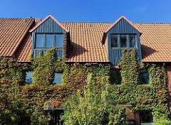 Neubau mit Dachfenstern / Erkern - Fassade ist dicht mit wildem Wein bewachsen.