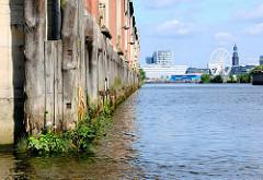 Holzdalben / Streichdalben schützen das Mauerwerk eines Speichers  im Hamburger Moldauhafen - die Wasserlinie ist mit Wildkraut bewachsen.