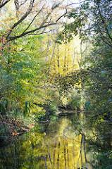 Alsterufer im Herbst - buntes Laub an den Bäumen - Spiegelung im Wasser der Alster - Alsterwanderweg in Hamburg Wellingsbüttel.