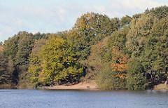 Bäume im Herbst am Ufer des Kupferteichs von Hamburg Lemsahl - Mellingstedt.