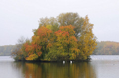 Oejendorfer Park Insel mit Herbstbäumen - Öjendorfer See - Hamburger Naherholungsgebiet.