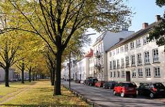 Mittelstreifen mit Bäumen - Herbstlaub; Gebäude an der Palmaille Altonas.