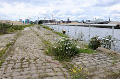 Pflastersteine am Petersenkai - blühendes Wildkraut, Schienen der Hafenbahn - Blick über den Baakenhafen zu den Baustellen in der Hamburger Hafencity.