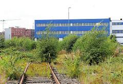 Verwaltungsgebäude / Lagergebäude mit Gleisanschluss - mit Wildkraut und Bäumen überwucherte Gleisanlage.