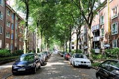 Wohnstrasse in HH-Hamm; Lindenbäume als Allee / Strassenbäume, gepflasterte Strasse - parkende Autos.