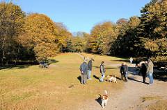 Hundetummelplatz - Hundefreilaufzone in Hamburg Niendorf - Bilder vom Niendorfer Gehege im Herbst - herbstlich gefärbte Blätter.